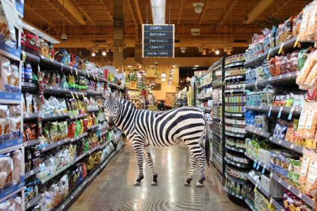 NZ_BYC_Zebra-In-Whole-Foods